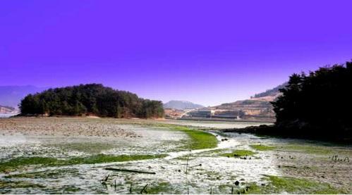 choongmoo01.jpg